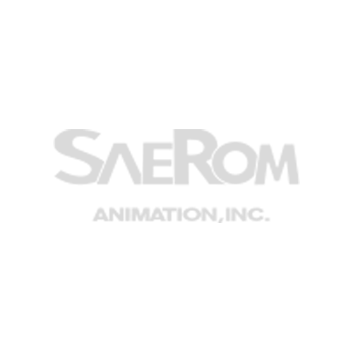 Saerom Animation